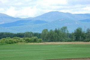 Turf Field with a White Mountain View